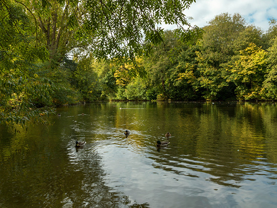 Visit Swindon Lawn Lakes